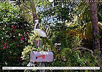 Floridas Post (Wandkalender 2019 DIN A3 quer) - Produktdetailbild 10