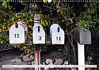 Floridas Post (Wandkalender 2019 DIN A3 quer) - Produktdetailbild 12