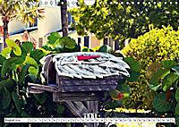 Floridas Post (Wandkalender 2019 DIN A4 quer) - Produktdetailbild 4