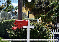 Floridas Post (Wandkalender 2019 DIN A4 quer) - Produktdetailbild 5
