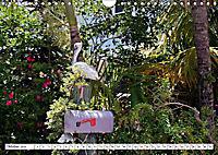 Floridas Post (Wandkalender 2019 DIN A4 quer) - Produktdetailbild 8