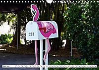 Floridas Post (Wandkalender 2019 DIN A4 quer) - Produktdetailbild 6