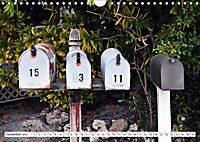 Floridas Post (Wandkalender 2019 DIN A4 quer) - Produktdetailbild 12