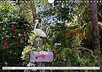 Floridas Post (Wandkalender 2019 DIN A4 quer) - Produktdetailbild 10