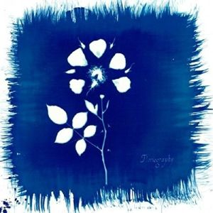 Floriography (Vinyl), Painted Zeros