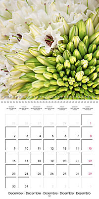 Flower Bouquet (Wall Calendar 2019 300 × 300 mm Square) - Produktdetailbild 12