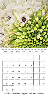 Flower Bouquet (Wall Calendar 2019 300 × 300 mm Square) - Produktdetailbild 12