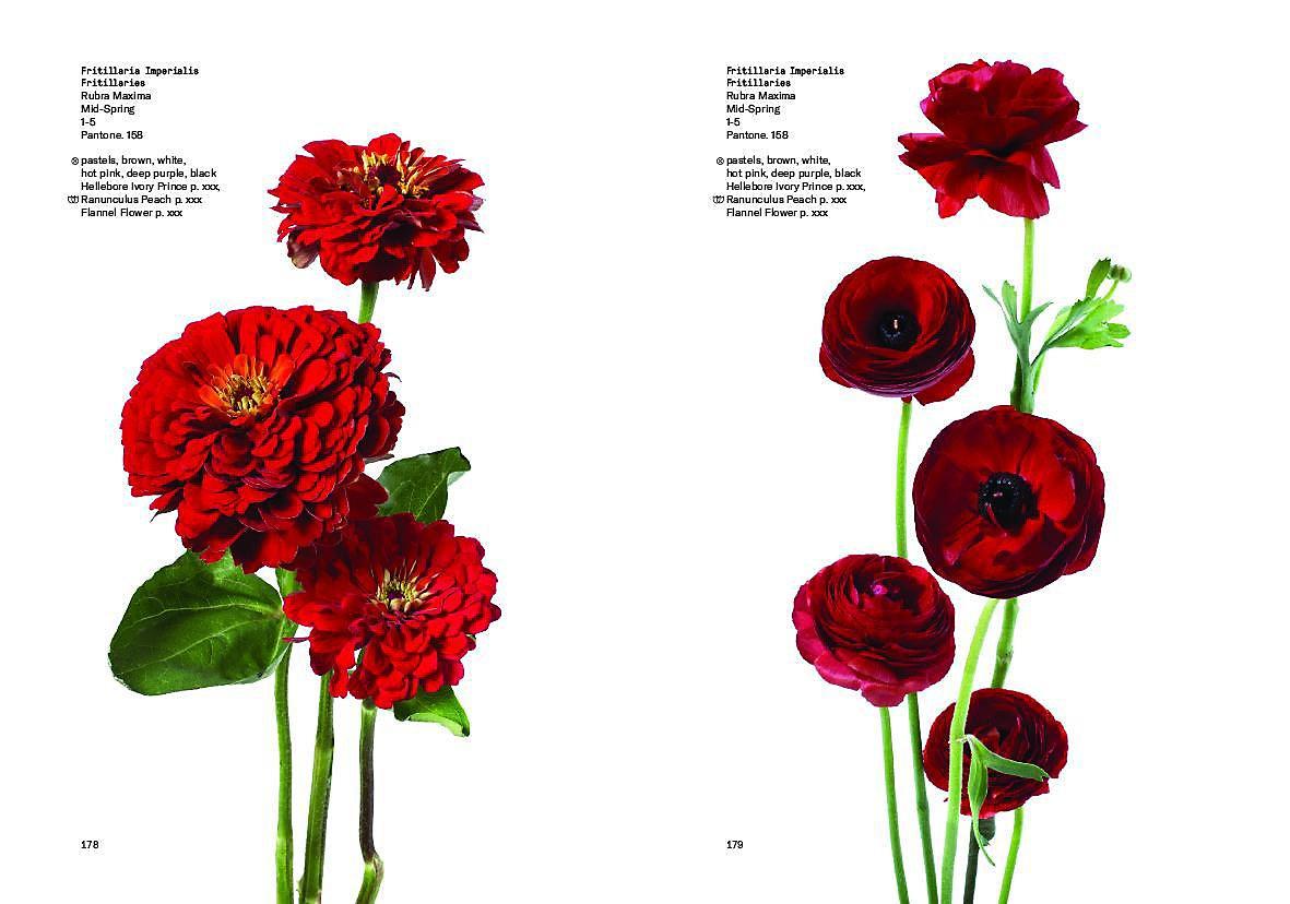 Flower Colour Guide Buch Von Darroch Putnam Portofrei Bestellen