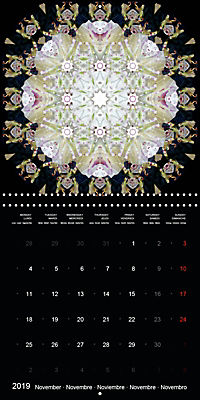 Flower Energy Mandalas (Wall Calendar 2019 300 × 300 mm Square) - Produktdetailbild 11