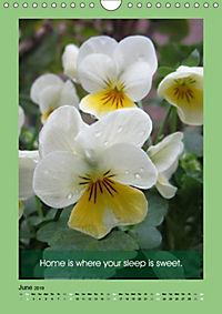 Flowerful Quoteful (Wall Calendar 2019 DIN A4 Portrait) - Produktdetailbild 6