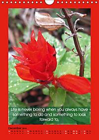Flowerful Quoteful (Wall Calendar 2019 DIN A4 Portrait) - Produktdetailbild 12