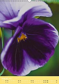 Flowers and Petals (Wall Calendar 2019 DIN A3 Portrait) - Produktdetailbild 8