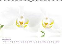 Flowers Dreams - UK Version (Wall Calendar 2019 DIN A3 Landscape) - Produktdetailbild 10