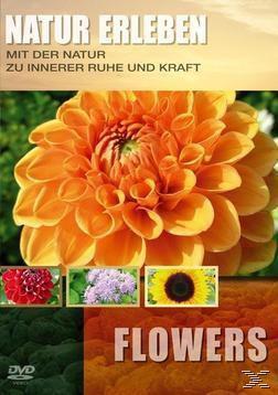Flowers - Natur erleben