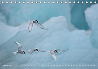 Flügel 2019 Der vogelwilde Kalender (Tischkalender 2019 DIN A5 quer) - Produktdetailbild 2