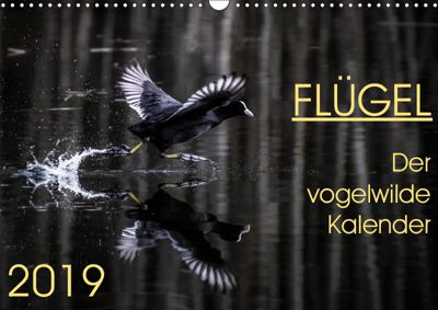 Flügel 2019 Der vogelwilde Kalender (Wandkalender 2019 DIN A3 quer), Irma van der Wiel