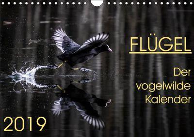 Flügel 2019 Der vogelwilde Kalender (Wandkalender 2019 DIN A4 quer), Irma van der Wiel