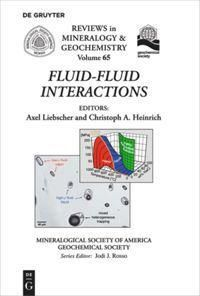Fluid-Fluid Interactions