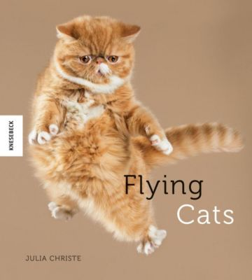 Flying Cats, Julia Christe