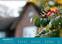 Föhr 2019. Porträt einer Insel (Wandkalender 2019 DIN A2 quer) - Produktdetailbild 9