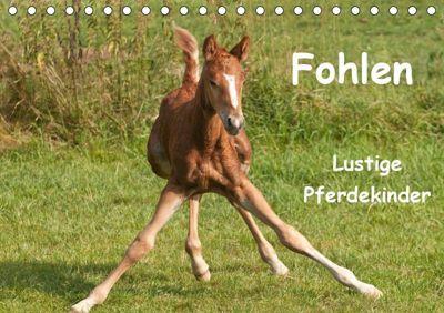Fohlen - Lustige Pferdekinder (Tischkalender 2019 DIN A5 quer), Meike Bölts