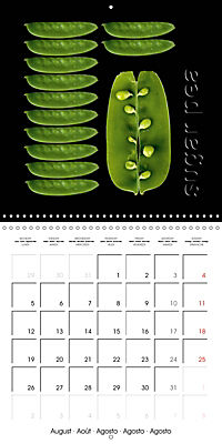 foodART fruit and veggies (Wall Calendar 2019 300 × 300 mm Square) - Produktdetailbild 8