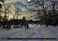 Forest collection (Wall Calendar 2019 DIN A3 Landscape) - Produktdetailbild 12