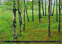 Forest collection (Wall Calendar 2019 DIN A3 Landscape) - Produktdetailbild 5