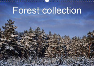 Forest collection (Wall Calendar 2019 DIN A3 Landscape), Marek Wasiel