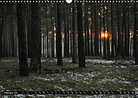 Forest collection (Wall Calendar 2019 DIN A3 Landscape) - Produktdetailbild 2