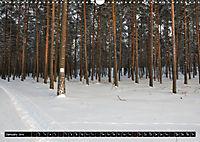 Forest collection (Wall Calendar 2019 DIN A3 Landscape) - Produktdetailbild 1
