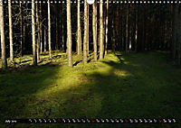 Forest collection (Wall Calendar 2019 DIN A3 Landscape) - Produktdetailbild 7
