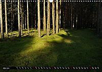 Forest collection (Wall Calendar 2019 DIN A3 Landscape) - Produktdetailbild 7