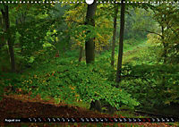Forest collection (Wall Calendar 2019 DIN A3 Landscape) - Produktdetailbild 8