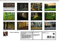 Forest collection (Wall Calendar 2019 DIN A3 Landscape) - Produktdetailbild 13