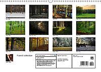 Forest collection (Wall Calendar 2019 DIN A3 Landscape) - Produktdetailbild 13