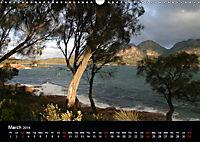 Forests photographed on four continents (Wall Calendar 2019 DIN A3 Landscape) - Produktdetailbild 3