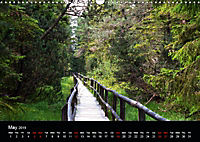 Forests photographed on four continents (Wall Calendar 2019 DIN A3 Landscape) - Produktdetailbild 5