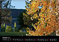 Forests photographed on four continents (Wall Calendar 2019 DIN A3 Landscape) - Produktdetailbild 10