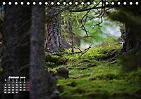 Formen und Strukturen der Natur (Tischkalender 2019 DIN A5 quer) - Produktdetailbild 1