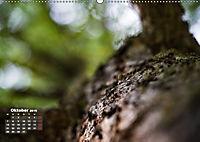 Formen und Strukturen der Natur (Wandkalender 2019 DIN A2 quer) - Produktdetailbild 10