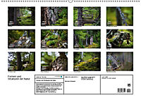 Formen und Strukturen der Natur (Wandkalender 2019 DIN A2 quer) - Produktdetailbild 13