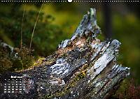 Formen und Strukturen der Natur (Wandkalender 2019 DIN A2 quer) - Produktdetailbild 5