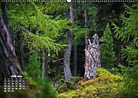 Formen und Strukturen der Natur (Wandkalender 2019 DIN A2 quer) - Produktdetailbild 7