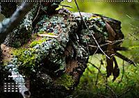 Formen und Strukturen der Natur (Wandkalender 2019 DIN A2 quer) - Produktdetailbild 8