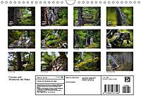 Formen und Strukturen der Natur (Wandkalender 2019 DIN A4 quer) - Produktdetailbild 13