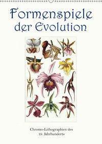 Formenspiele der Evolution. Chromolithographien des 19. Jahrhunderts (Wandkalender 2019 DIN A2 hoch), Jost Galle