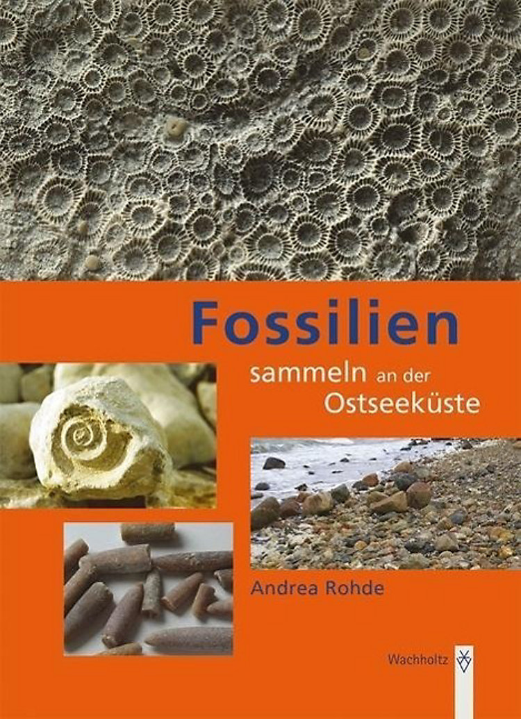 fossilien sammeln an der ostseek ste buch. Black Bedroom Furniture Sets. Home Design Ideas