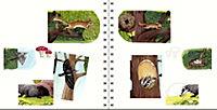 Frag doch mal ... die Maus! Erstes Sachwissen Band 1: Im Wald - Produktdetailbild 3