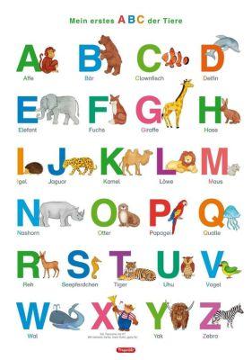 Fragenbär-Lernposter. Mein erstes ABC der Tiere